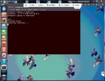 teamviewer-ubuntu.JPG